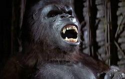 Кадр из фильма «Кинг конг»