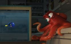 Кадр из мультфильма «В поисках Дори»