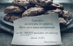 Постер фильма «Визит»