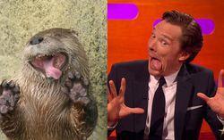 Кадр из ролика Benedict Cumberbatch, Johnny Depp and Graham Take Otter Photos