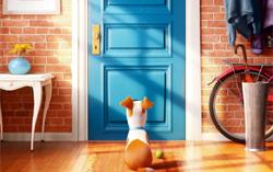 Постер фильма «Тайная жизнь домашних животных»