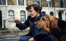 Кадр из нового сезона «Шерлока»
