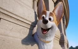 Кадр из фильма Королевский корги