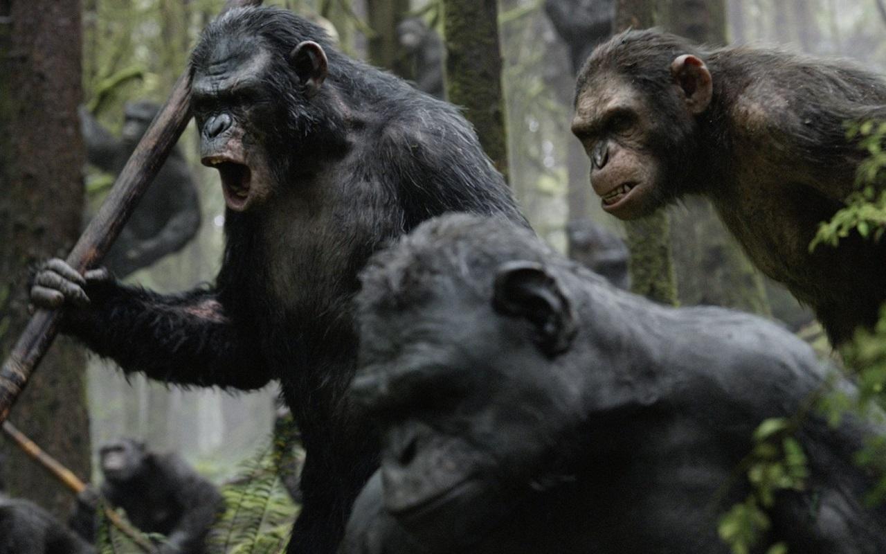 16 лучших фильмов сговорящими животными