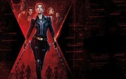 Постер фильма «Черная вдова»
