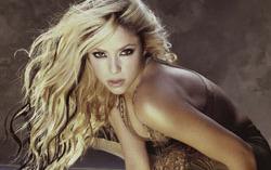 Шакира. Фото с сайта connect.in.com