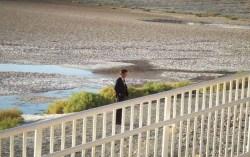 Кадр из фильма «Древо жизни»