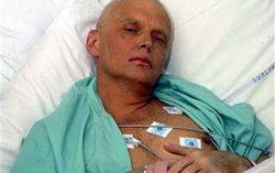 Литвиненко. Фото с сайта gazeta.ru