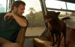 Кадр из фильма «Рыжий пес»