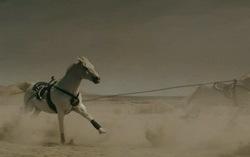 Кадр из клипа Scissor Sisters — «Only The Horses»