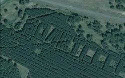 Надпись из леса. Фото с сайта 3dnews.ru
