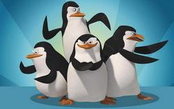 «Пингвины из Мадагаскара». Изображение с сайта yaom.ru