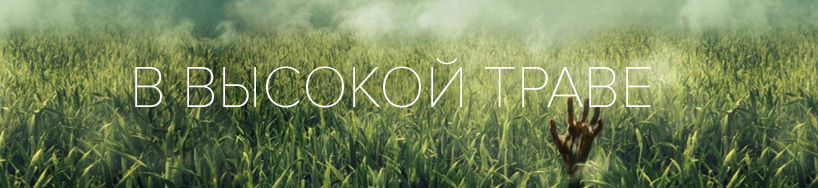 kino_In-the-Tall-Grass