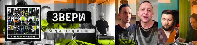 music_zveri